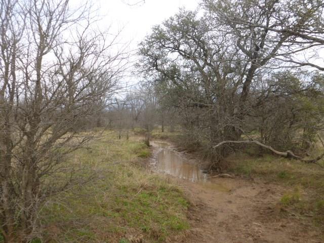 000 Cr 210, Santa Anna, TX 76878 (MLS #14012841) :: RE/MAX Town & Country