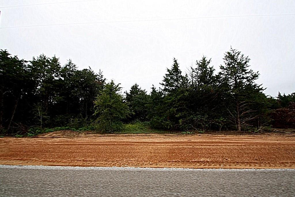 TBD 25 County Road 2184 - Photo 1