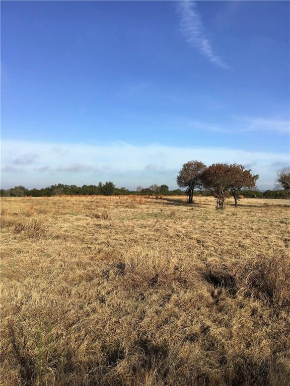 392 Private Road 2163, Iredell, TX 76649 (MLS #14027184) :: The Daniel Team