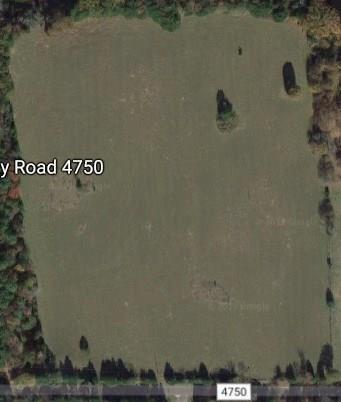 1077 Cr 4750, Winnsboro, TX 75494 (MLS #14028149) :: Team Hodnett