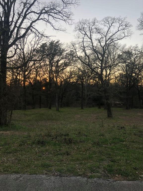 124 Willow Creek Circle - Photo 1