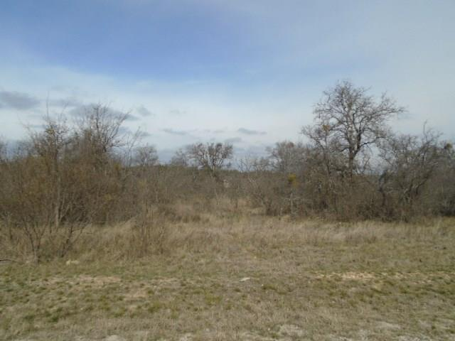 Lot 87 Feather Bay Boulevard, Brownwood, TX 76801 (MLS #14033360) :: The Sarah Padgett Team