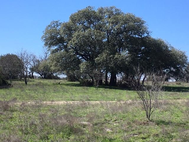 TBD Cr 216, Hico, TX 76457 (MLS #14035920) :: Robbins Real Estate Group