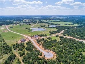 Lot 41 Chisum Drive, Millsap, TX 76066 (MLS #14046311) :: The Kimberly Davis Group