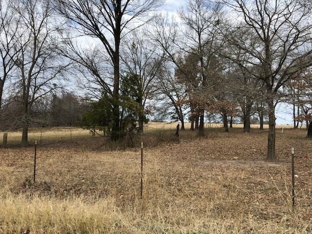 000 County Road 4350 Road, Scroggins, TX 75480 (MLS #14049889) :: Baldree Home Team