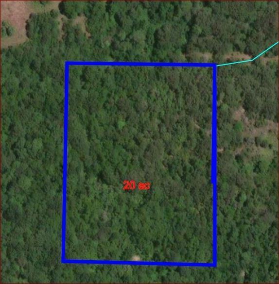 TBD County Rd 103, Whitesboro, TX 76273 (MLS #14053287) :: Roberts Real Estate Group