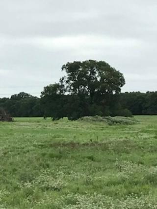 201 N Katy Ranch Court N, Weatherford, TX 76085 (MLS #14053336) :: Lynn Wilson with Keller Williams DFW/Southlake