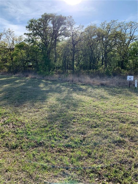 Lot 97 Eagle Drive, Lipan, TX 76462 (MLS #14054384) :: The Mitchell Group