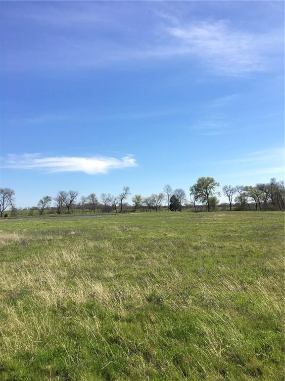 TBD Hwy 80 Lot 18, Wills Point, TX 75169 (MLS #14054844) :: Lynn Wilson with Keller Williams DFW/Southlake