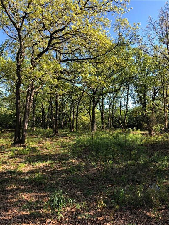 100 Preston Oaks Drive, Pottsboro, TX 75076 (MLS #14066566) :: All Cities Realty
