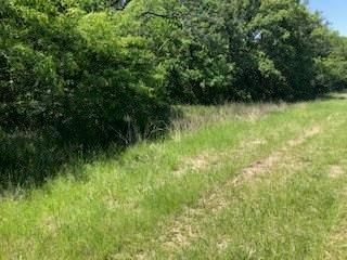 0 County Road 2100, Kemp, TX 75143 (MLS #14077980) :: The Heyl Group at Keller Williams