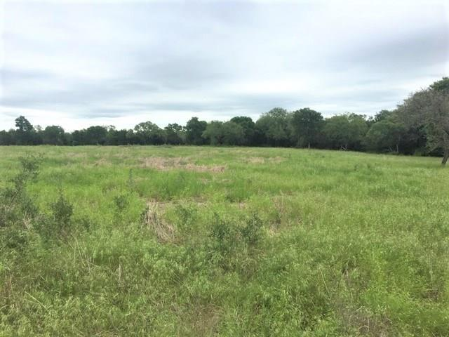 540 Private Road 2163, Iredell, TX 76649 (MLS #14082354) :: The Heyl Group at Keller Williams