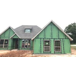 101 Eagle Drive, Lipan, TX 76462 (MLS #14088247) :: Baldree Home Team