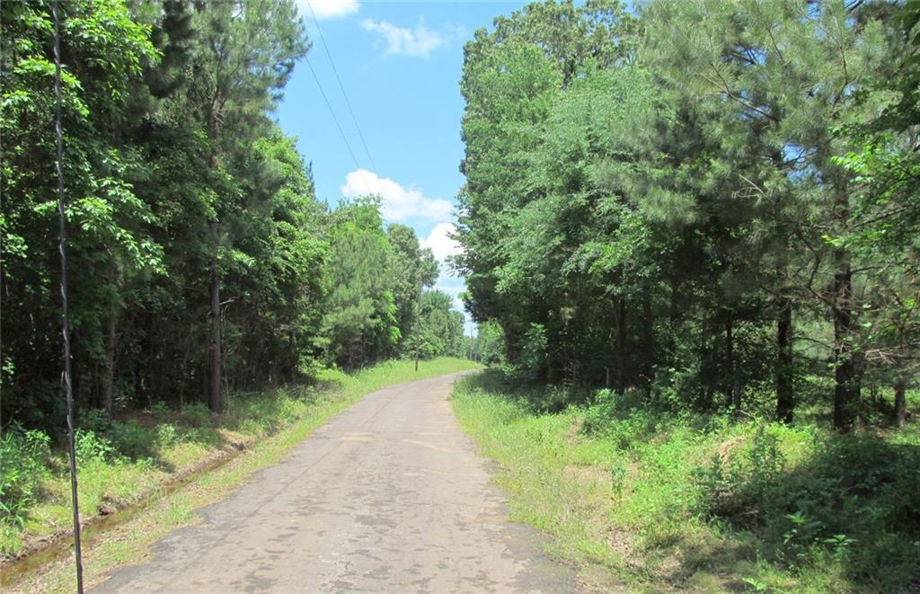 0000 County Road 3218, Pittsburg, TX 75451 (MLS #14091447) :: The Good Home  Team