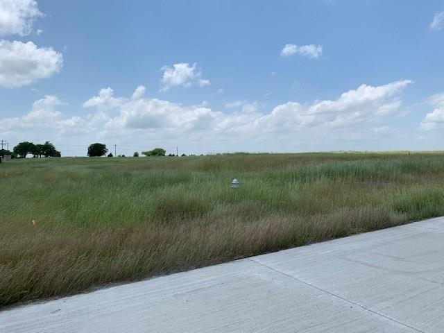 TBD Balboa Place, Celina, TX 75009 (MLS #14094944) :: Real Estate By Design