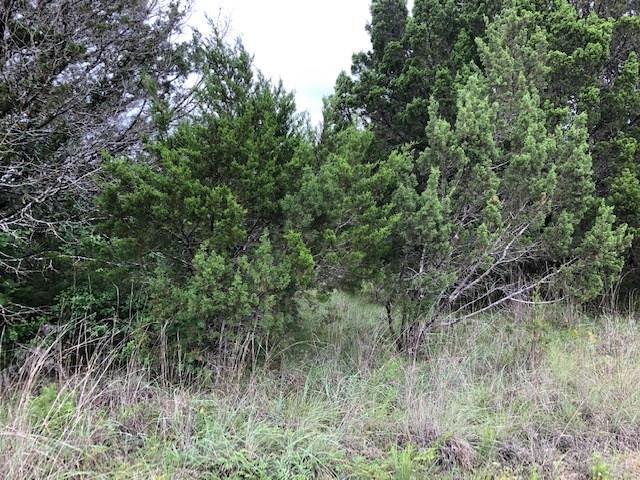 2522 Creek Drive, Granbury, TX 76048 (MLS #14097472) :: Tenesha Lusk Realty Group