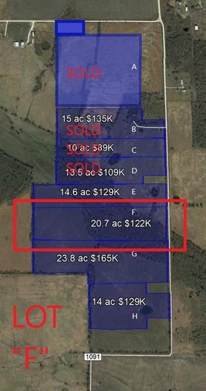 Lot F Cr 1091, Celeste, TX 75423 (MLS #14098354) :: Vibrant Real Estate