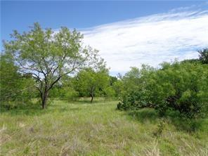 L378 Three Forks Crossing, Chico, TX 76431 (MLS #14106563) :: RE/MAX Town & Country
