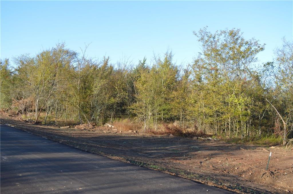 Lot 54 County Road 2310 - Photo 1