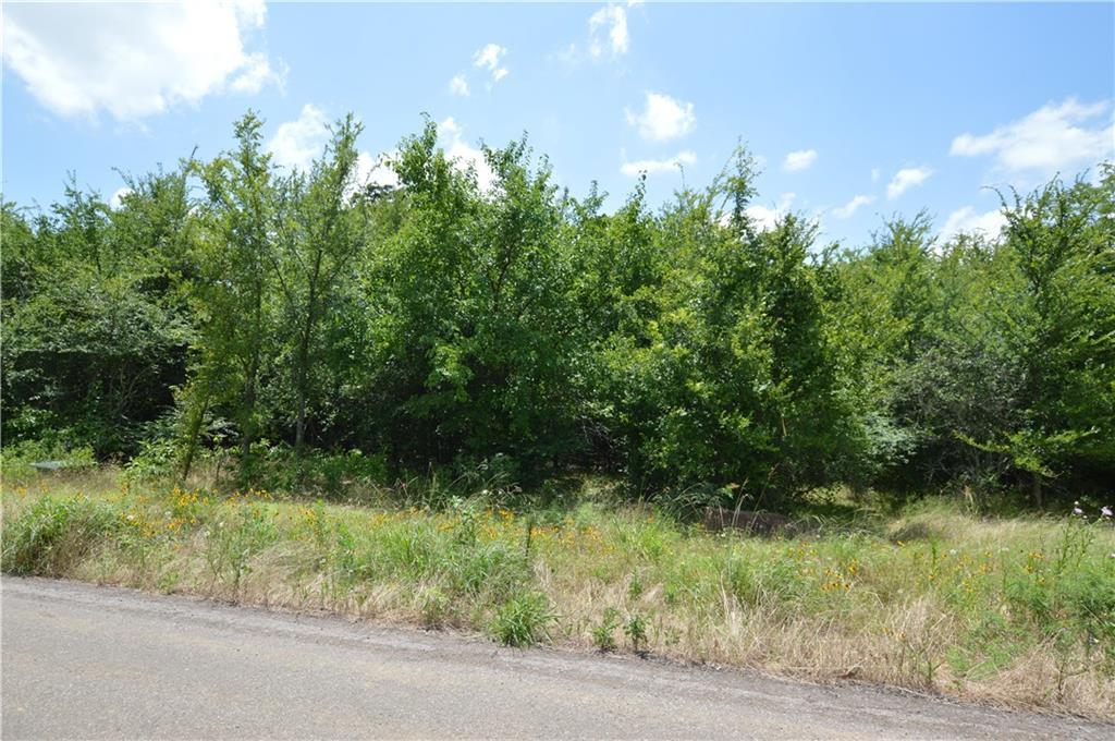 Lot 52 County Road 2310 - Photo 1