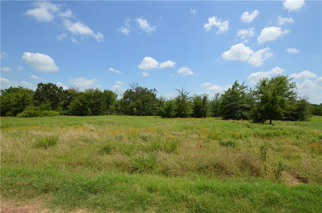 Lot 12 County Road 2310 - Photo 1