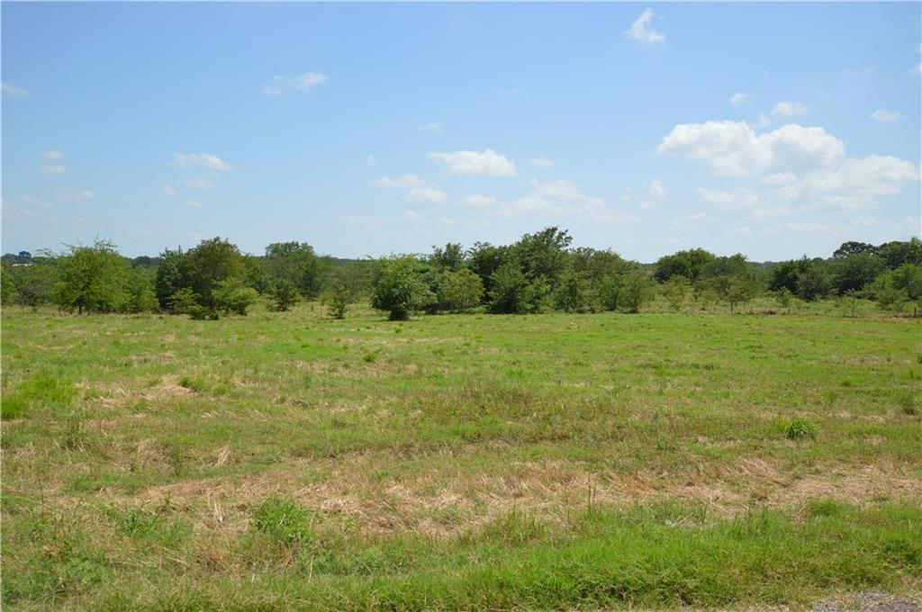 Lot 15 County Road 2310 - Photo 1