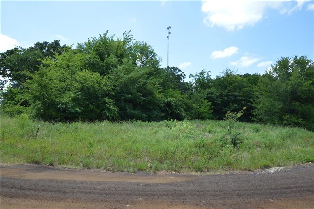 Lot 43 County Road 2310 - Photo 1