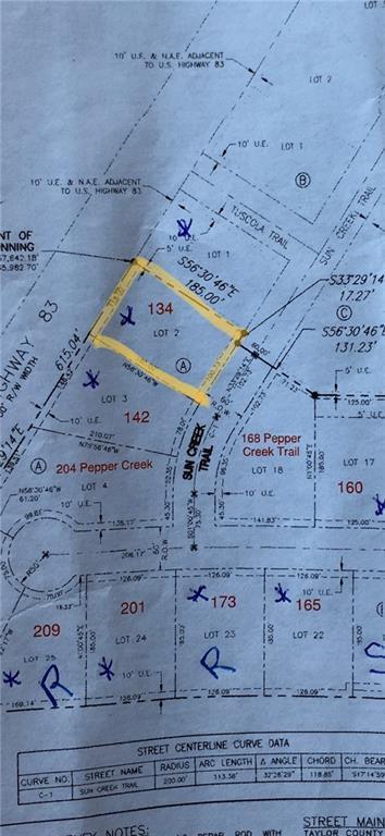 134 Sun Creek Trail, Tuscola, TX 79562 (MLS #14117819) :: The Good Home Team