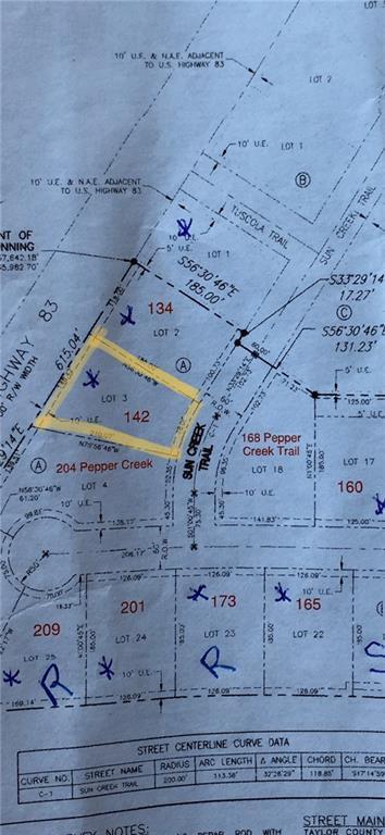 142 Sun Creek Trail, Tuscola, TX 79562 (MLS #14117840) :: The Good Home Team