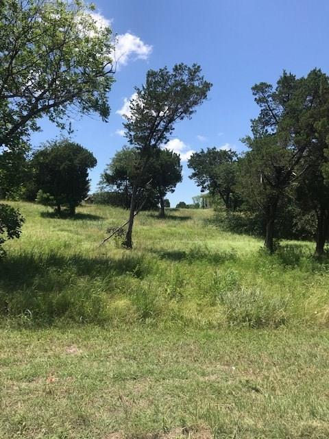 7224 S Aberdeen Drive, Cleburne, TX 76033 (MLS #14120495) :: RE/MAX Town & Country