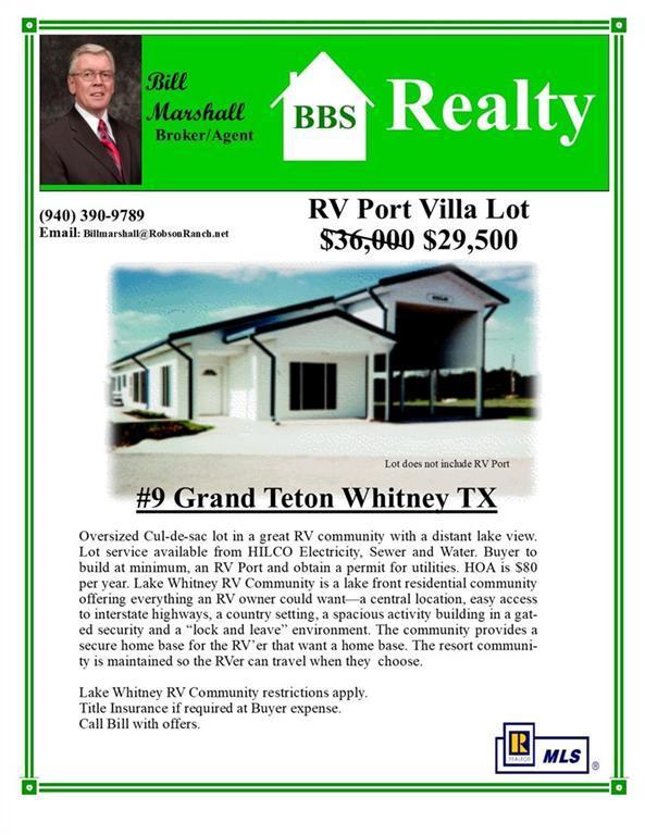 9 NE Grand Teton Drive, Whitney, TX 76692 (MLS #14122211) :: The Good Home Team