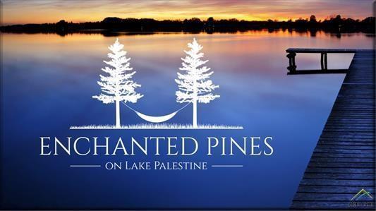 21561 Joe Paul Lane, Chandler, TX 75758 (MLS #14122764) :: Lynn Wilson with Keller Williams DFW/Southlake