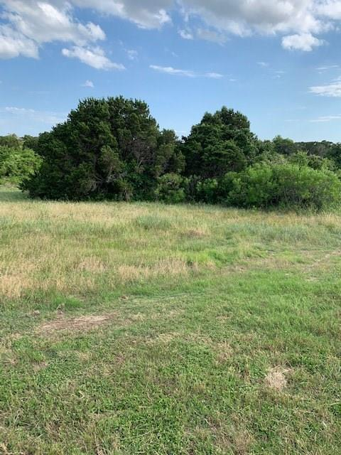 6521 Torrey Pine Lane, Cleburne, TX 76033 (MLS #14123227) :: Potts Realty Group