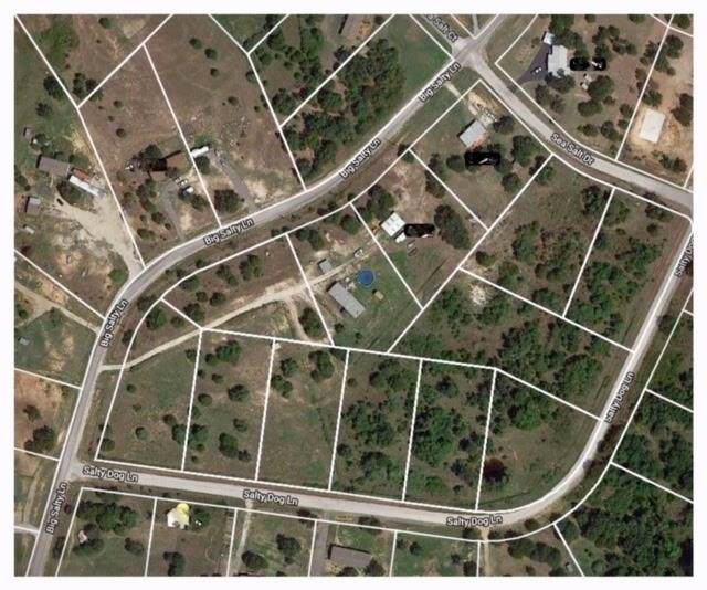 Lot 7 Salty Dog Lane, Springtown, TX 76082 (MLS #14137639) :: Magnolia Realty