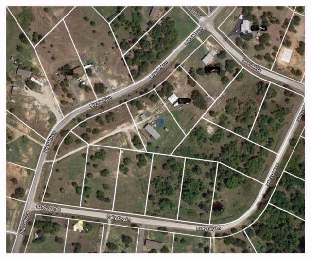 Lot 8&9 Salty Dog Lane, Springtown, TX 76082 (MLS #14137676) :: Magnolia Realty