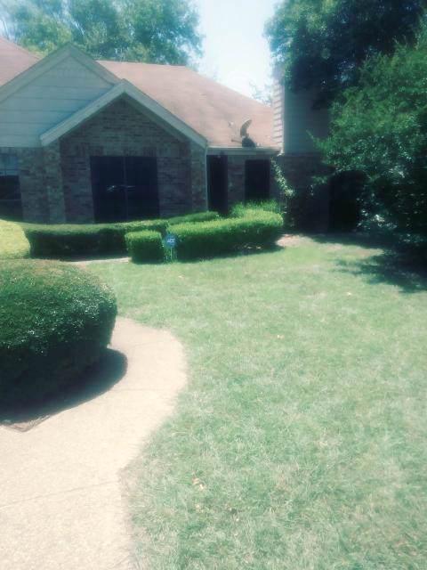 2833 Stonycroft Court, Lancaster, TX 75134 (MLS #14138194) :: Baldree Home Team