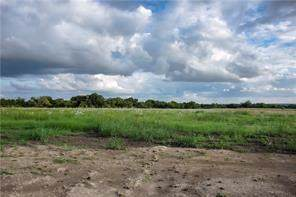 Lot 53 Ford Court, Weston, TX 75097 (MLS #14140779) :: The Welch Team