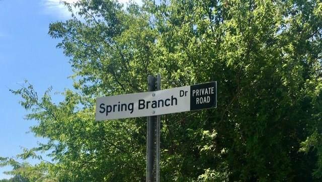 TBD Spring Branch Drive, Oak Point, TX 75068 (MLS #14141593) :: Lynn Wilson with Keller Williams DFW/Southlake