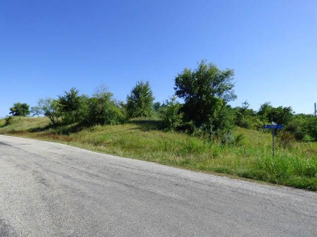2 Lots Lanai Drive, Runaway Bay, TX 76426 (MLS #14143903) :: Lynn Wilson with Keller Williams DFW/Southlake