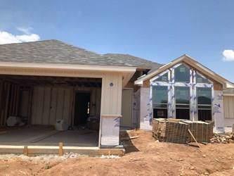 256 Carriage Hills, Abilene, TX 79602 (MLS #14145951) :: The Chad Smith Team