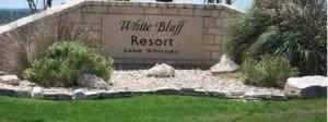 35044 Oak Wood Drive, Whitney, TX 76692 (MLS #14146851) :: Lynn Wilson with Keller Williams DFW/Southlake