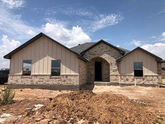 202 Carriage Hills Parkway, Abilene, TX 79602 (MLS #14152231) :: Ann Carr Real Estate