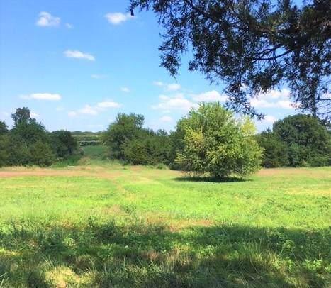 11088 Fm 1377, Blue Ridge, TX 75424 (MLS #14161762) :: Vibrant Real Estate