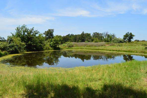 1166 County Road 456, Stephenville, TX 76401 (MLS #14162450) :: The Good Home Team