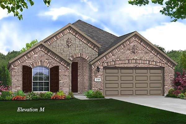1116 Quail Dove Drive, Little Elm, TX 75068 (MLS #14162850) :: Baldree Home Team