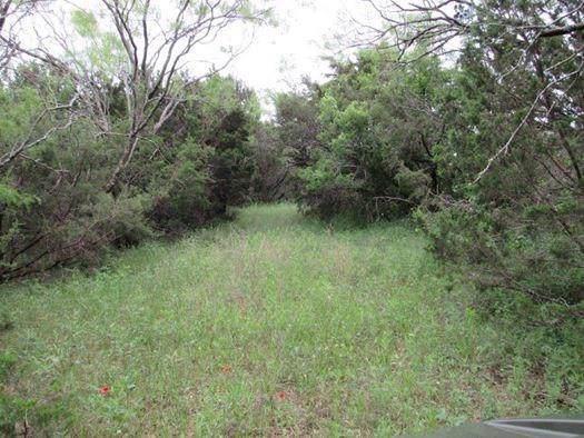 16934 Farm Road 205, Stephenville, TX 76401 (MLS #14163797) :: The Rhodes Team