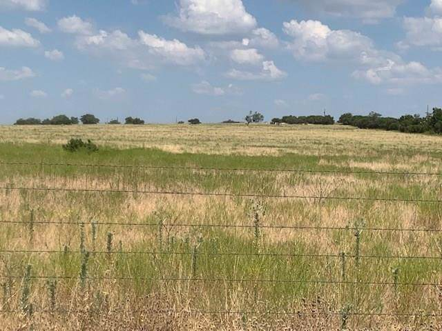 TBD Pr 1254 Off Of Cr 201, Hico, TX 76457 (MLS #14165134) :: The Mitchell Group