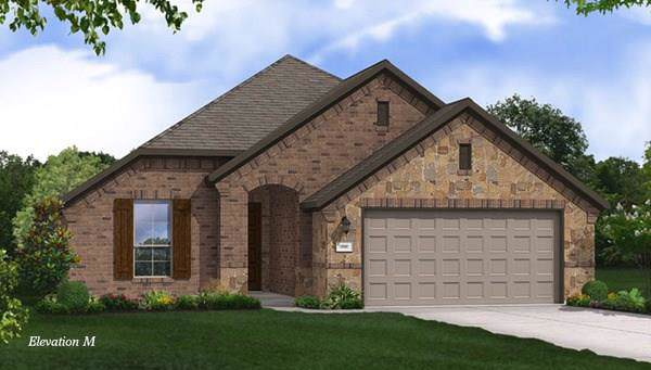 1112 Quail Dove Drive, Little Elm, TX 75068 (MLS #14167627) :: Tenesha Lusk Realty Group