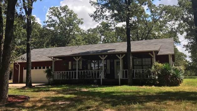 157 Armada Loop, Payne Springs, TX 75156 (MLS #14170329) :: The Real Estate Station