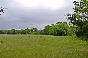 995 County Road 5075 24 AC, Leonard, TX 75452 (MLS #14171235) :: The Heyl Group at Keller Williams